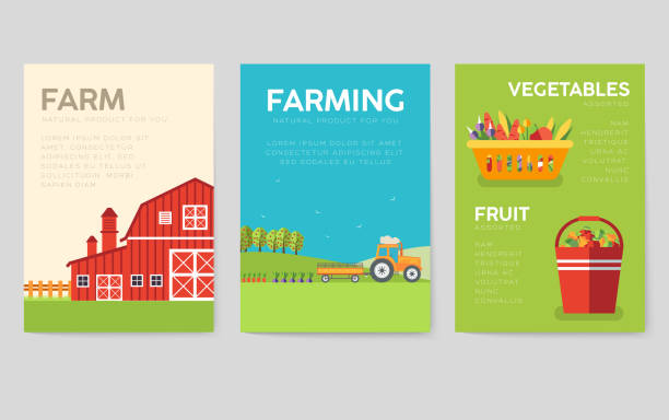 Farm information cards set. Nature template of flyer, magazines, posters, book cover, banners. Eco infographic concept  background. Layout illustrations modern pages with typography text Farm information cards set. Nature template of flyer, magazines, posters, book cover, banners. Eco infographic concept  background. Layout illustrations modern pages with typography garden center stock illustrations