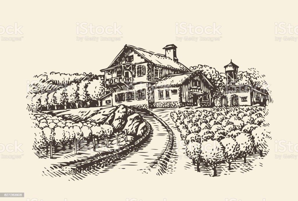 Farm landscape. Hand-drawn vineyard or agriculture. Vintage sketch vector vector art illustration