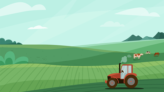 Farm landscape vector illustration with green meadow field, tractor and animal cow horse. Nature spring or summer farmland scenery. Countryside for organic production background