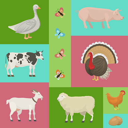 Farm Life With Animals Banner Vector Illustration Collection Of Cute Pets Domestic Animals As Cow Pig And Goosebutterfly Hen Turkey Chick Sheep Local Market Eggs Stock Illustration Download Image Now Istock