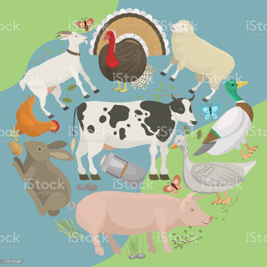 Farm Life With Animals Banner Vector Illustration Collection Of Cute Pets Domestic Animals As Cow Pig And Goosebutterfly Hen Turkey Chick Rabbit Sheep Local Market Eggs Stock Illustration Download Image Now