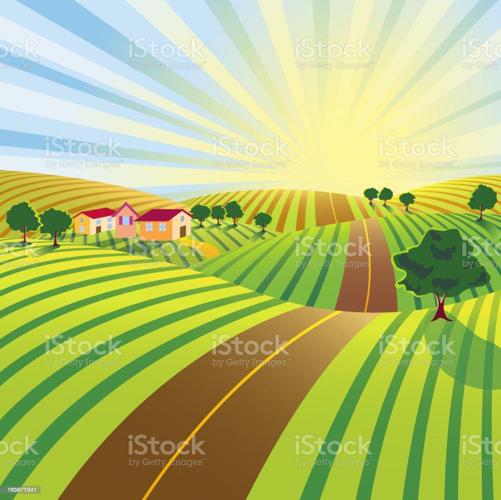 Farm Road in Morning vector art illustration