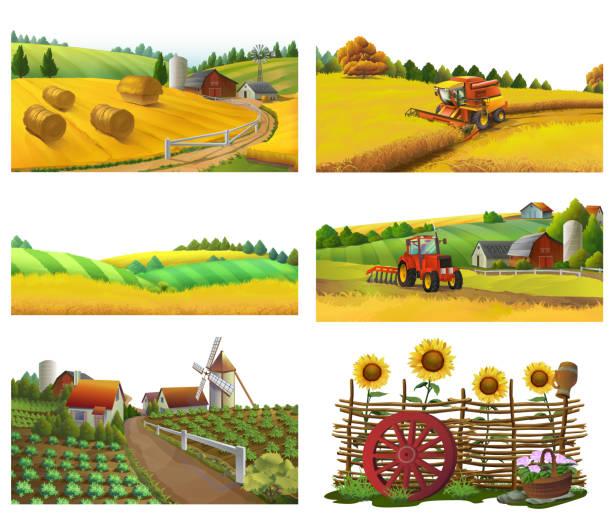bauernhof, landschaftspflege, vektor-set - herbstgemüseanbau stock-grafiken, -clipart, -cartoons und -symbole