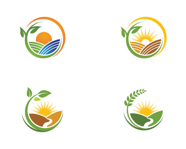 Farm vector agriculture Farm vector agriculture organic farm stock illustrations