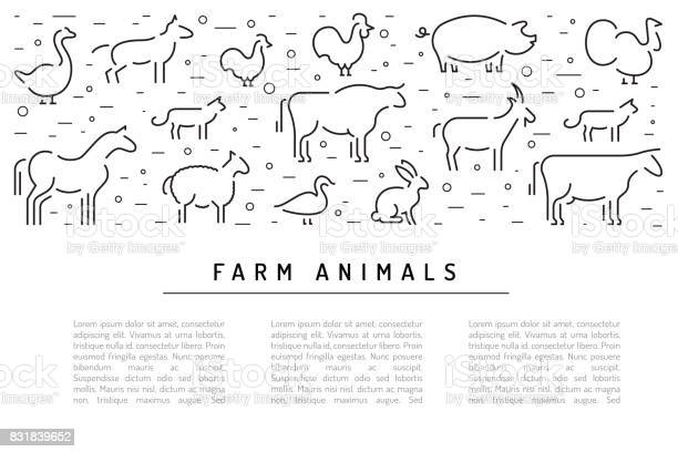 Farm vector animals silhouettes outline vector id831839652?b=1&k=6&m=831839652&s=612x612&h=q6gjvn7evh5ckwwjb0l89b jpfkfyq6cwvejbvj6e1u=