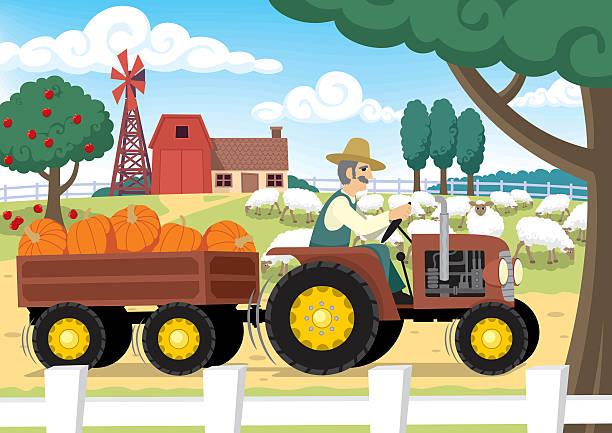 farm - herbstgemüseanbau stock-grafiken, -clipart, -cartoons und -symbole