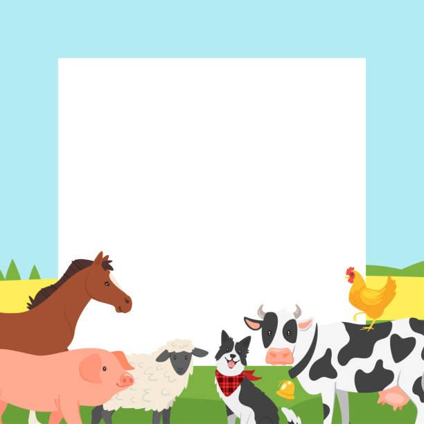 bauernhof video bilderrahmen - lustige kuh bilder stock-grafiken, -clipart, -cartoons und -symbole