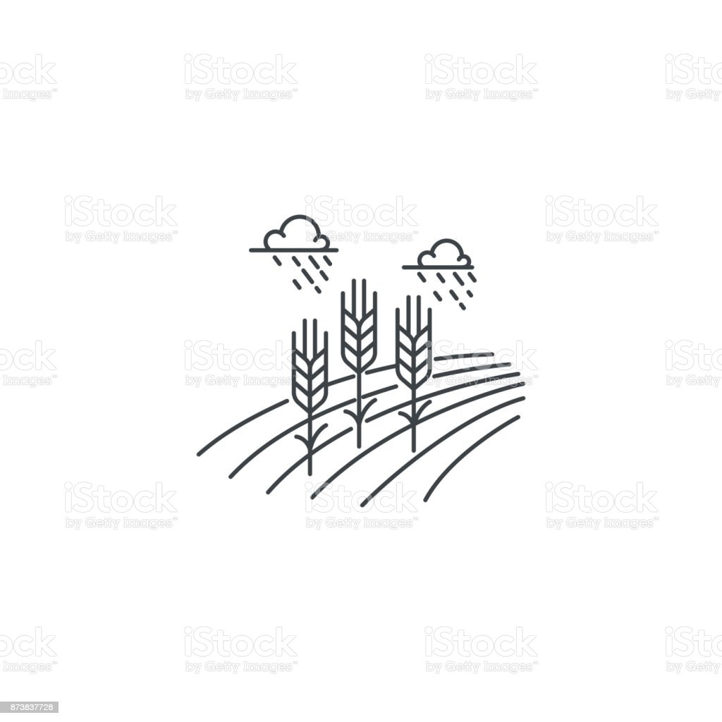 Farm wheat line icon. Outline illustration of wheat field vector linear design isolated on white background. Farm icon template, element for agriculture business, line icon object. vector art illustration