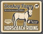 istock Farm with donkeys and horse riding service 1220353285