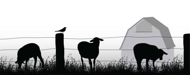farm yard sheep - clip art of a black and white barn stock illustrations, clip art, cartoons, & icons