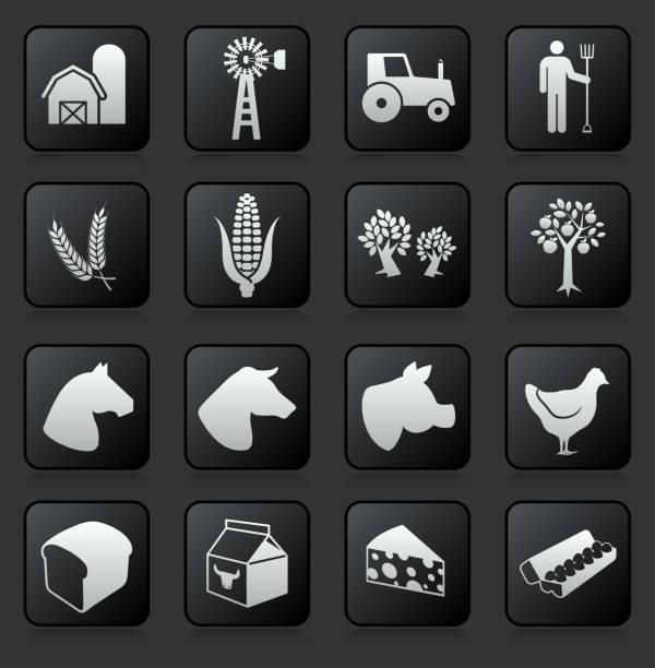 landwirt arbeiten lizenzfreie vektor icon-set - dinkelbrot stock-grafiken, -clipart, -cartoons und -symbole