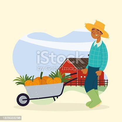 istock farmer carry vegetables 1325033298