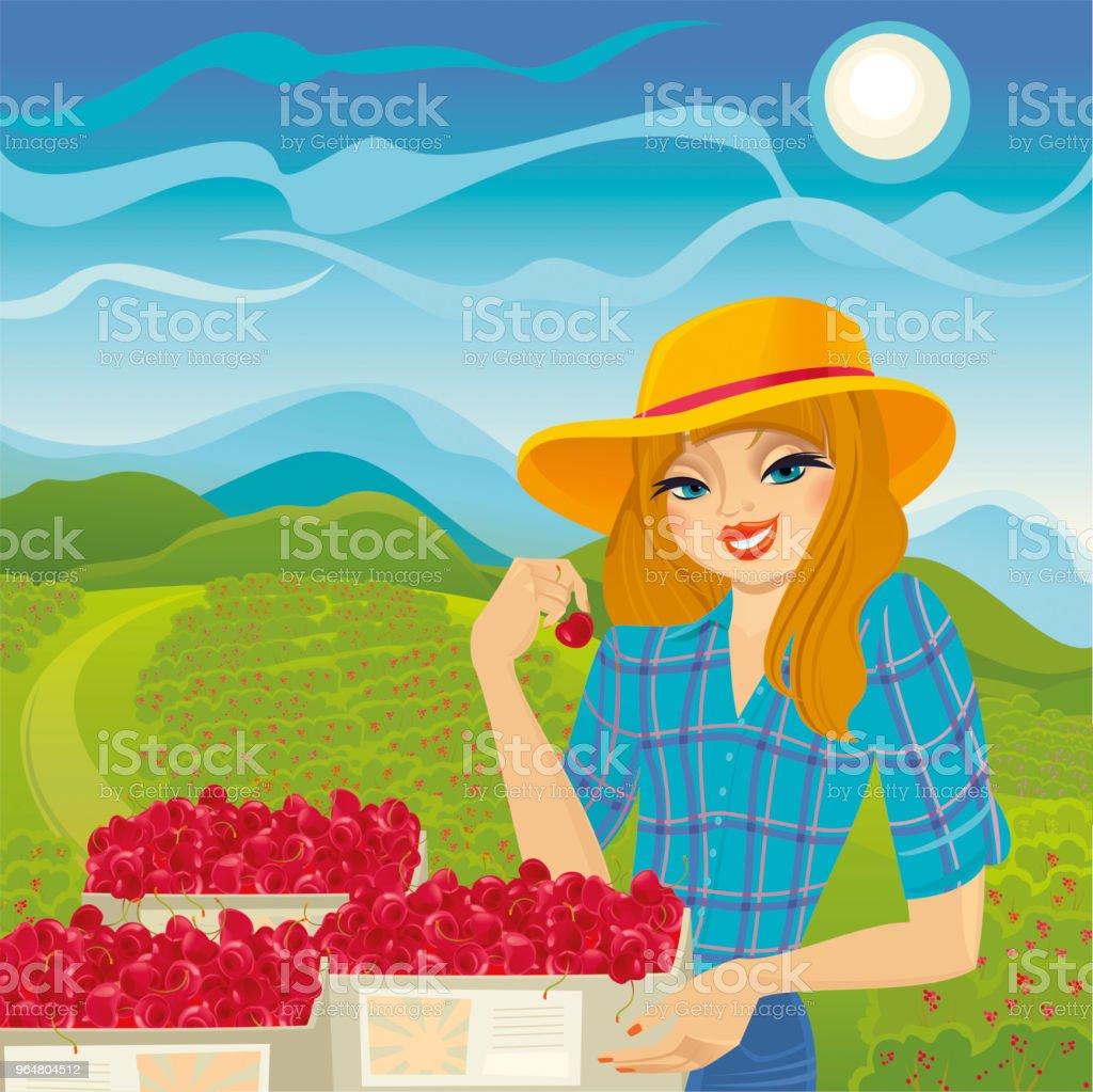Garota de agricultor vender cereja fresca orgânica - Vetor de Adulto royalty-free