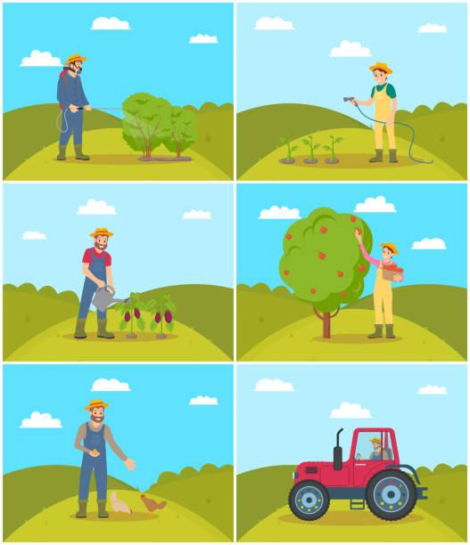 ilustrações de stock, clip art, desenhos animados e ícones de farmer spraying bushes set vector illustration - picking fruit
