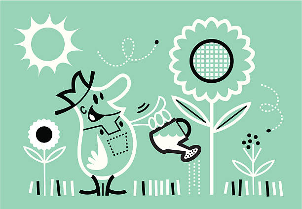 farmer watering his garden - peter bajohr stock illustrations