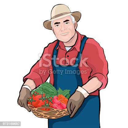 Farmer with basket of fresh vegetables, vector illustration, cartoon drawing. Colorful portrait elderly men keep in hand basket with tomatoes, radishes, carrots and green isolated on white background