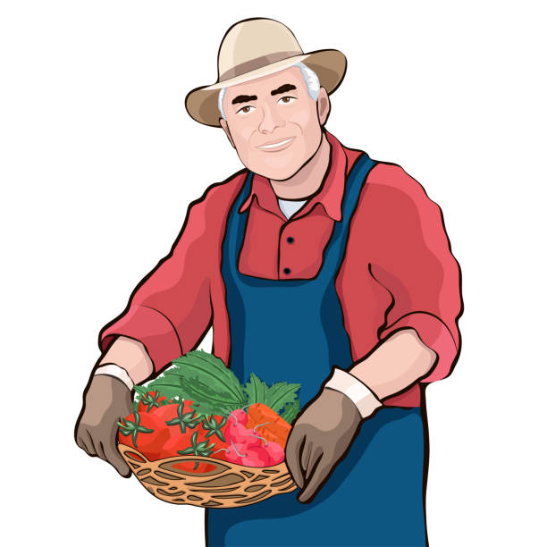 farmer with basket of fresh vegetables, vector illustration - old man smiling silhouettes stock illustrations, clip art, cartoons, & icons