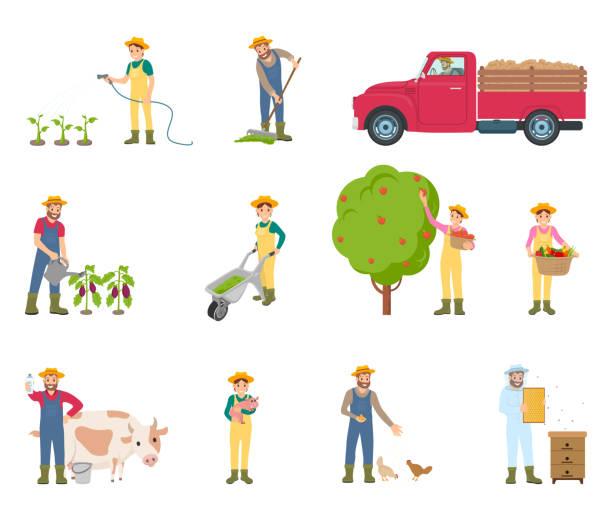 ilustrações de stock, clip art, desenhos animados e ícones de farmer with rakes and can vector illustration - picking fruit