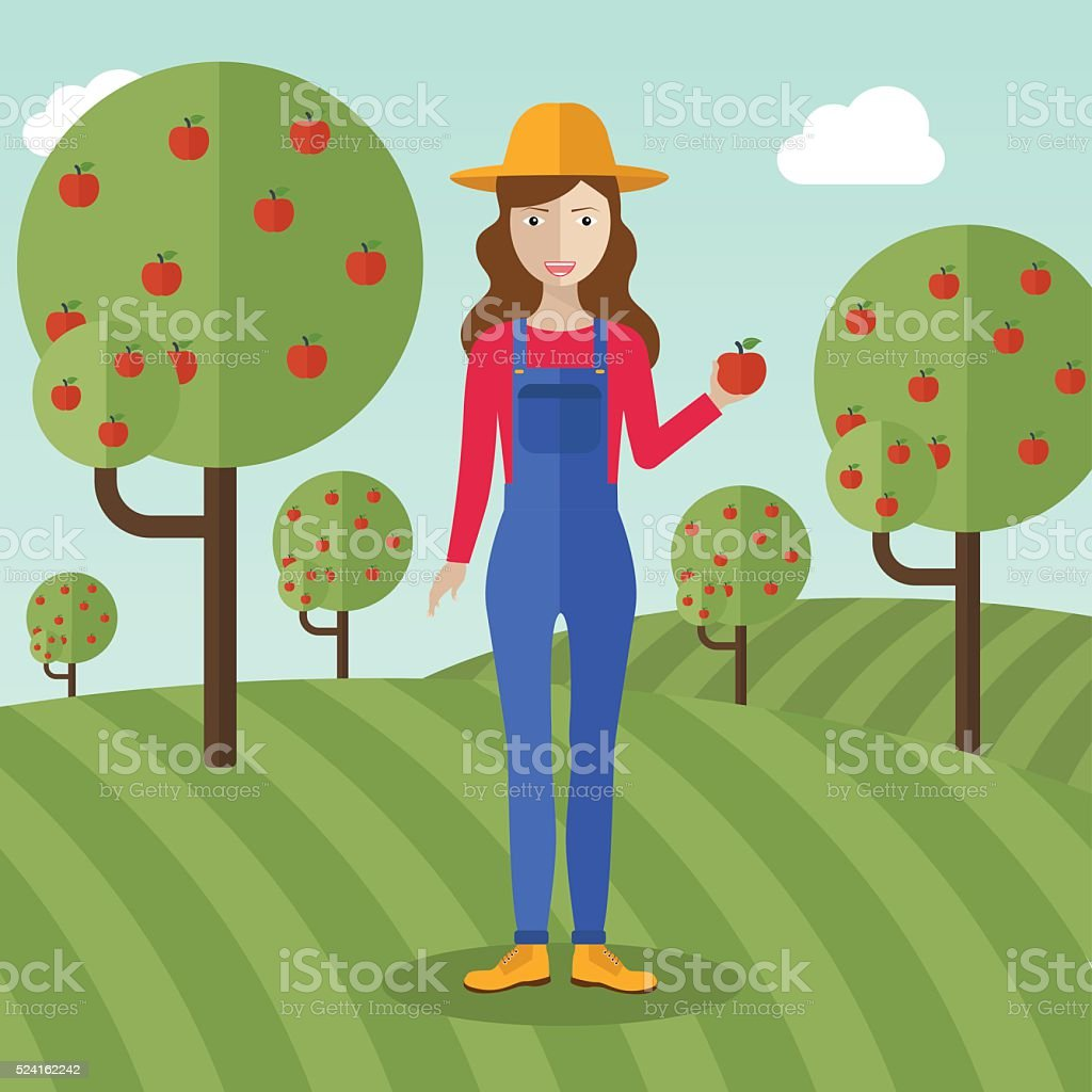 Farmer woman  collecting apples. vector art illustration