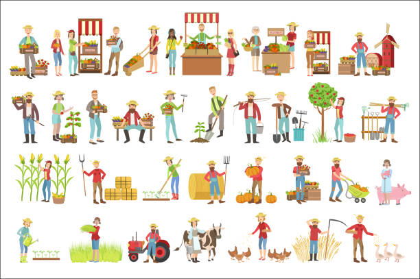 Farmers And Their Products Set Farmers And Their Products Set Of Simple Childish Flat Colorful Illustrations On White Background farmer's market stock illustrations
