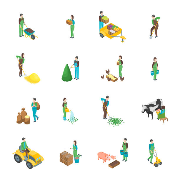 illustrazioni stock, clip art, cartoni animati e icone di tendenza di farmers at work 3d icons set isometric view. vector - mercato frutta donna
