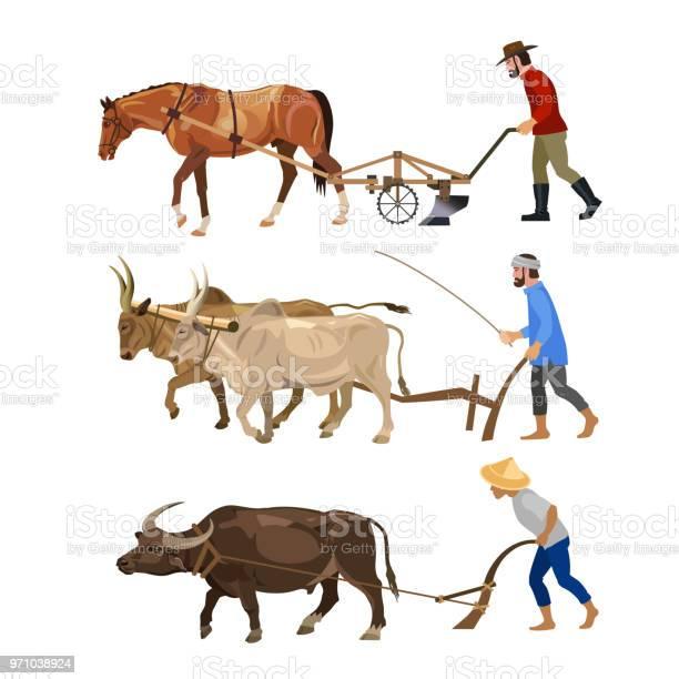 Farmers plows the land with animals vector id971038924?b=1&k=6&m=971038924&s=612x612&h=3ipilrwpw4z7bogbpqb krksvaex1mvmewhhnmeeibm=