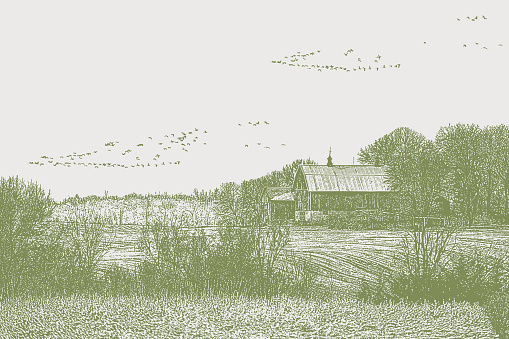 Farmhouse with geese flying in v formation