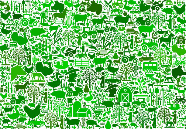 Farming and Agriculture Green Icon Pattern Farming and Agriculture Green Icon Pattern. The green vector icons create a seamless pattern and include popular farming and agriculture. Farm house, farm animals, fruits and vegetables are among the icons used in this file. The icons are carefully arranged on a light background and vary in size and shades of green color. pattern stock illustrations