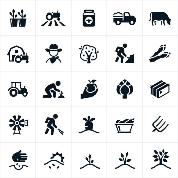 Farming and Agriculture Icons A set of single color farming and agriculture icons. The icons include farming, farmer, cowboy, crops, tractor, honey, farm truck, cow, livestock, apple tree, farmer working, growing, cultivating, asparagus, artichoke, hay bale, windmill, carrots, vegetables, pitch fork and planting to name a few. farmer stock illustrations