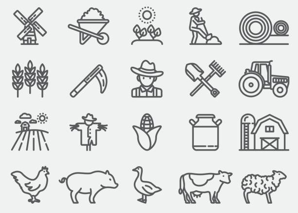 Farming and Agriculture Line Icons Farming and Agriculture Line Icons goose bird stock illustrations