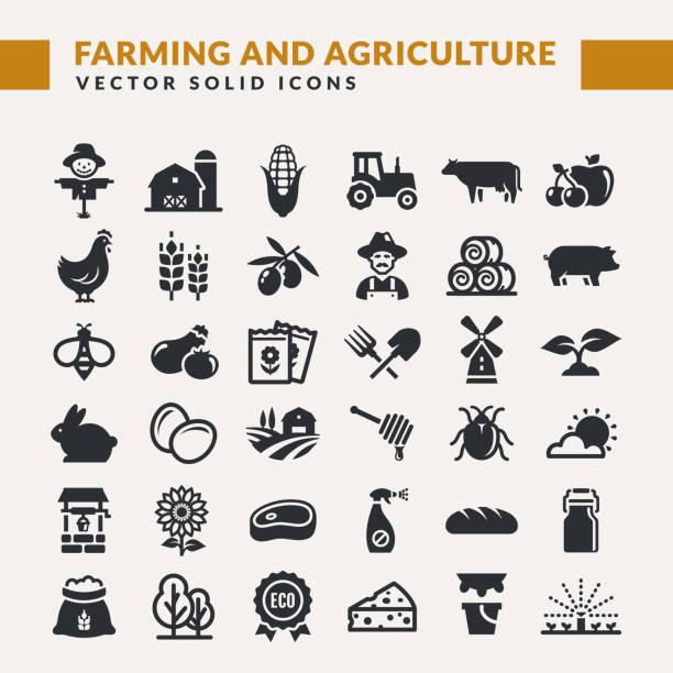 농업 및 농업 벡터 아이콘 - 농업 stock illustrations