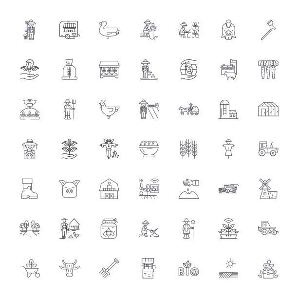 landwirtschaft und landwirte lineare symbole, zeichen, symbole vektorlinie illustration set - zeichensetzung stock-grafiken, -clipart, -cartoons und -symbole