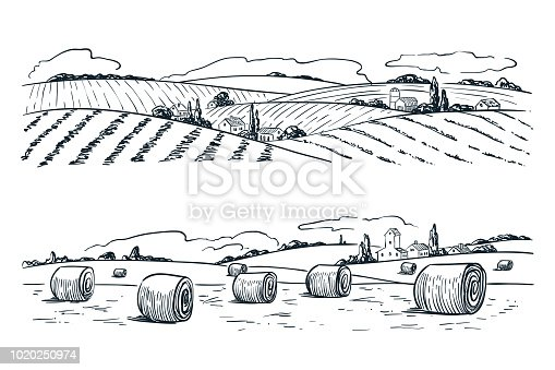 Farming fields landscape, vector sketch illustration. Agriculture and harvesting vintage background. Rural nature view.