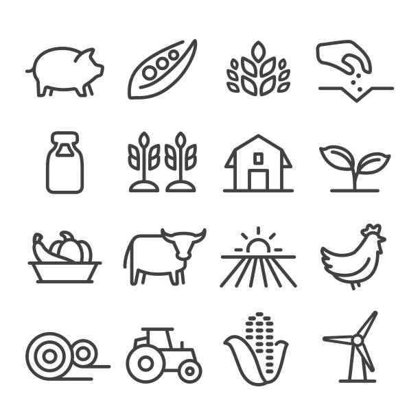 stockillustraties, clipart, cartoons en iconen met landbouw icons - line serie - pig farm