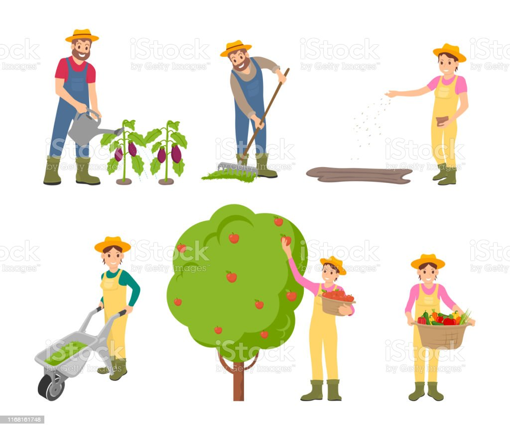 Farming Man and Woman Set Vector Illustration Farming man and woman icons set. Gathering of apples into basket, trolley with compost for land fertilizing. Person with harvested vegetables vector Adult stock vector