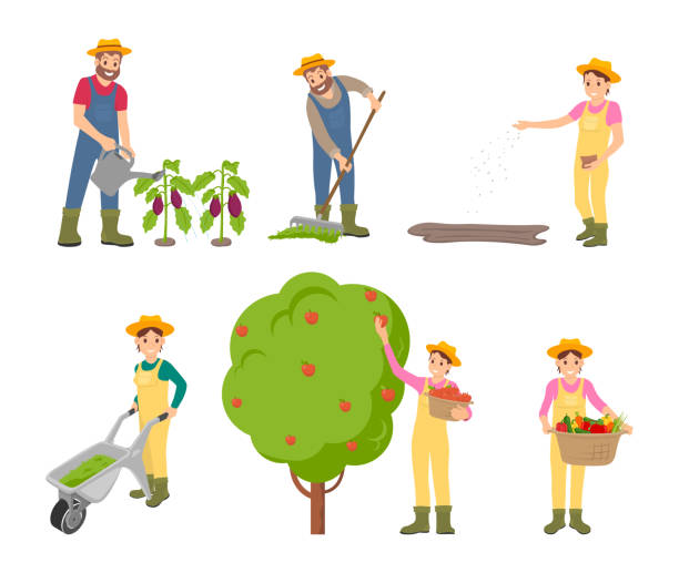 Farming Man and Woman Set Vector Illustration Farming man and woman icons set. Gathering of apples into basket, trolley with compost for land fertilizing. Person with harvested vegetables vector picking harvesting stock illustrations
