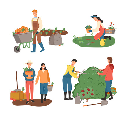 Farming People Planting and Harvesting Agriculture