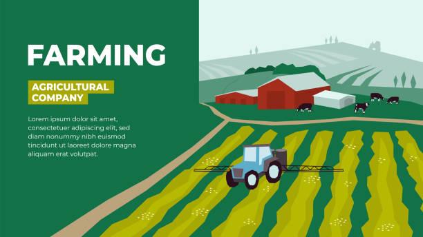 Farming template with irrigation tractor and cows – artystyczna grafika wektorowa
