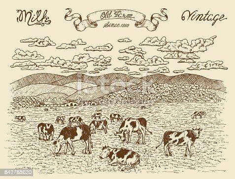 Black vintage engraving, hand drawn design illustrations for label, poster. Rural farm concept