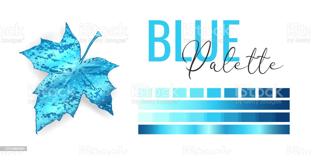 Mode Blau Metallic Farbe Trend Farbpalette Mit Verschiedenen Schattierungen Von Blauer Farbe Und Farbverlauf Gefrorenes Winterbaumblatt Auf Weissem Hintergrund Paintpalettemockup Vektorillustration Stock Vektor Art Und Mehr Bilder Von Anzeigeinstrument