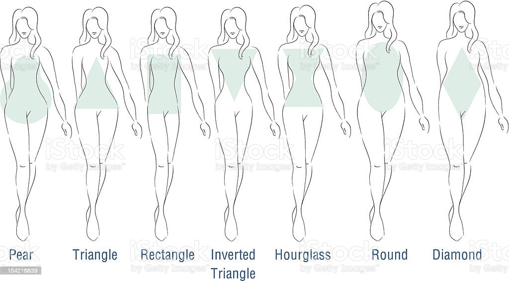 Fashion Body Types vector art illustration