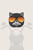 Exotic cat wear glasses, ride harley-davidson motor, fashion portrait of cat