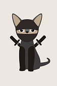 Ninja cat with japanese sword, Fashion portrait of cat