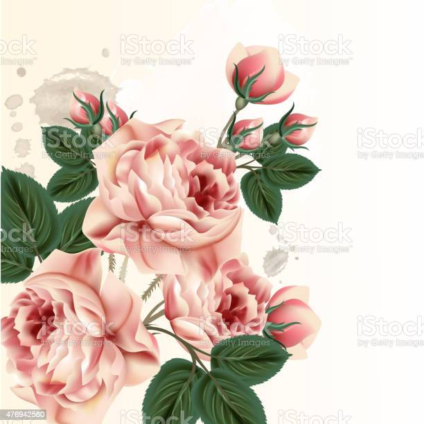 Fashion vector background with roses in vintage style vector id476942580?b=1&k=6&m=476942580&s=612x612&h=gnmod b4d9vjrkcsxnabkudw8rb wfzelf9g6axwoge=