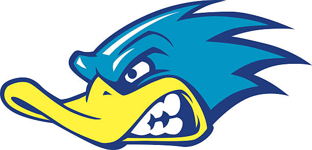 fast duck mascot - high school sports stock illustrations