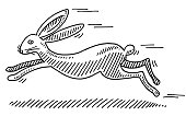 Hand-drawn vector drawing of a Fast Rabbit. Black-and-White sketch on a transparent background (.eps-file). Included files are EPS (v10) and Hi-Res JPG.