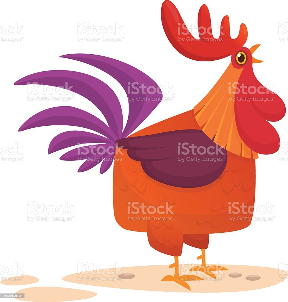 fat cartoon rooster colorful vector illustration of singing