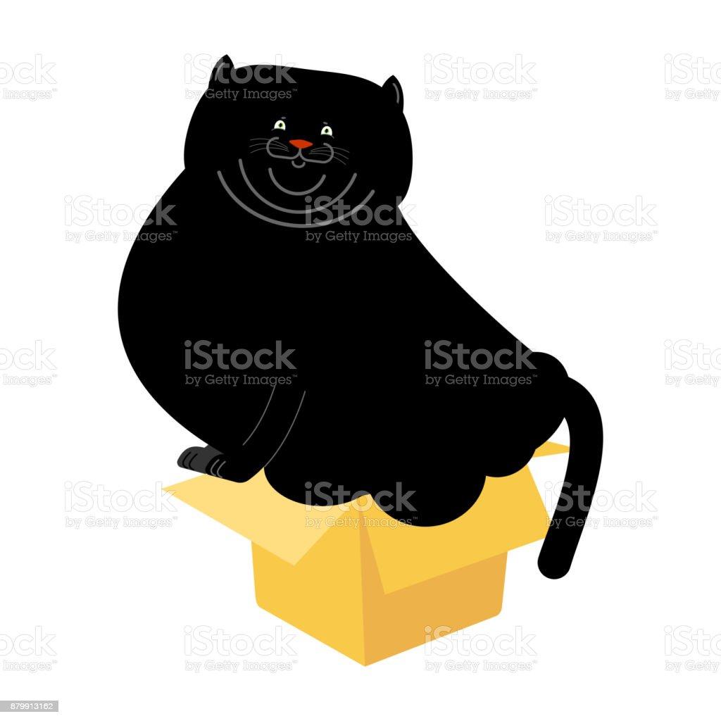 Fat Cat In Kleinen Kasten Isoliert. Haus Haustier Im Karton.  Vektor Illustration Lizenzfreies