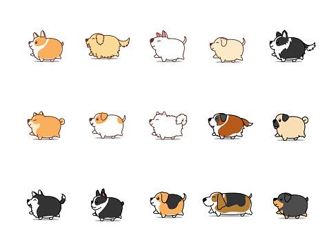 Fat dog walking cartoon icon set, vector illustration
