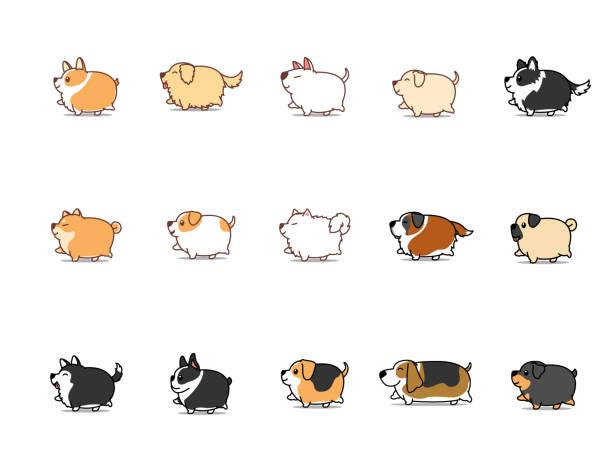 illustrazioni stock, clip art, cartoni animati e icone di tendenza di fat dog walking cartoon icon set, vector illustration - obesity